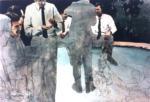 Peinture 1985
